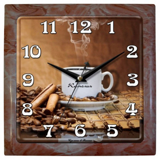 Настенные часы Камелия 9033868