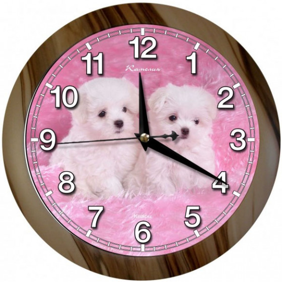 Настенные часы Камелия 0665580