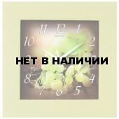 Настенные часы Салют ДС-4АА3-120