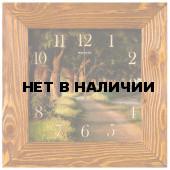 Настенные часы Салют ДС-4АС27-110