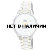 Мужские наручные часы Q&Q Q270-401