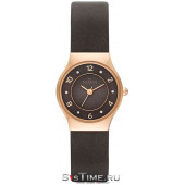 Наручные часы женские Skagen SKW2208