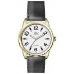 Мужские наручные часы Q&Q Q906-104