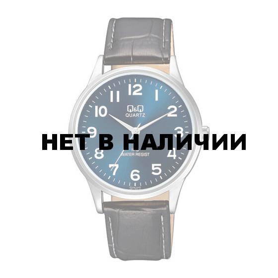 Мужские наручные часы Q&Q C214-315
