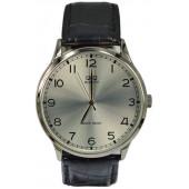 Мужские наручные часы Q&Q GU44-806