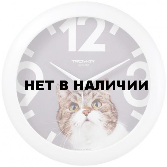 Настенные часы Troyka 11110193