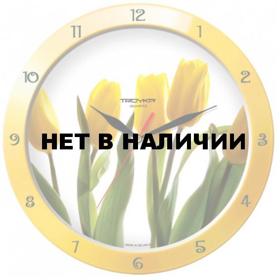 Настенные часы Troyka 11150165