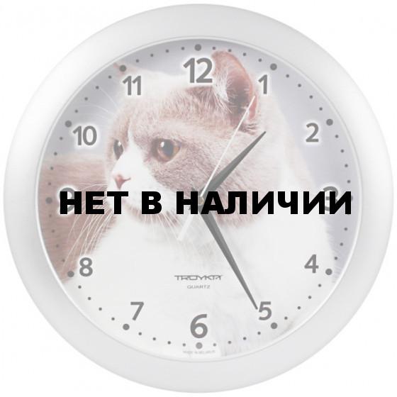 Настенные часы Troyka 11170192