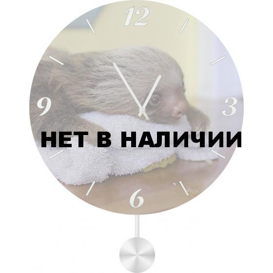 Настенные часы SvS 3011845