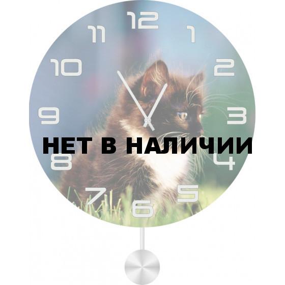 Настенные часы SvS 3011847