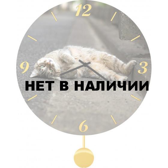 Настенные часы SvS 3011851