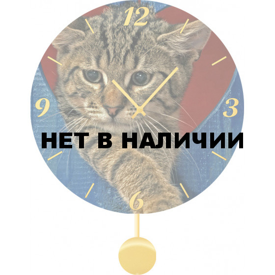 Настенные часы SvS 3011857