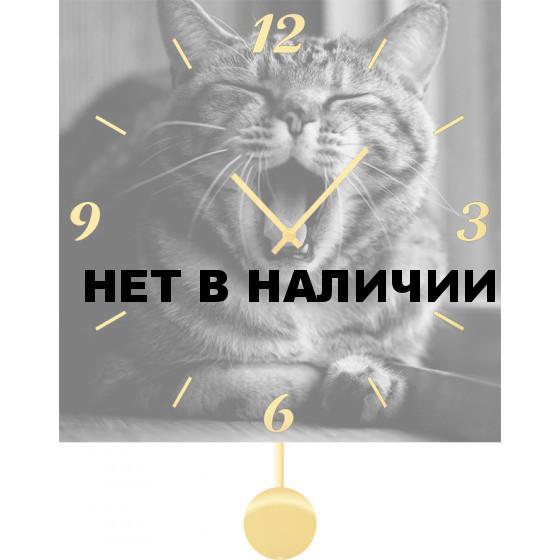 Настенные часы SvS 3011858