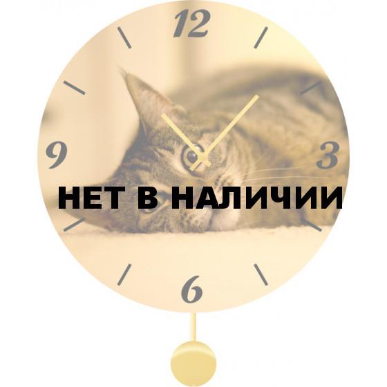 Настенные часы SvS 3011867