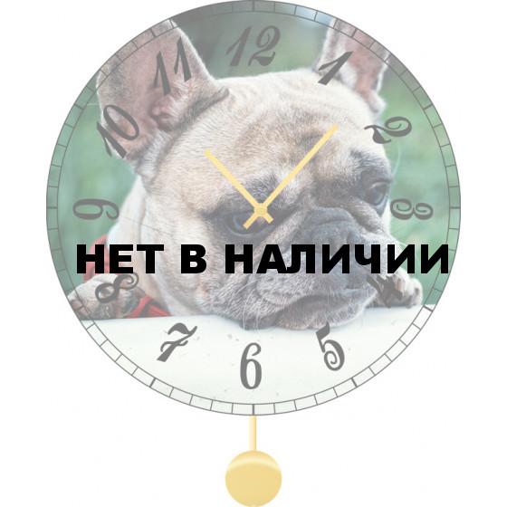 Настенные часы SvS 3011871