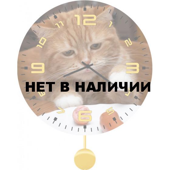 Настенные часы SvS 3012038