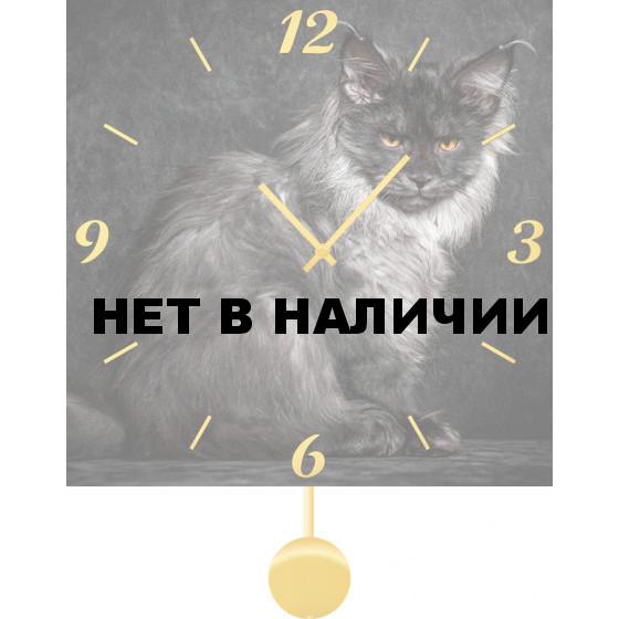 Настенные часы SvS 3012088
