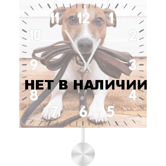 Настенные часы SvS 3512035