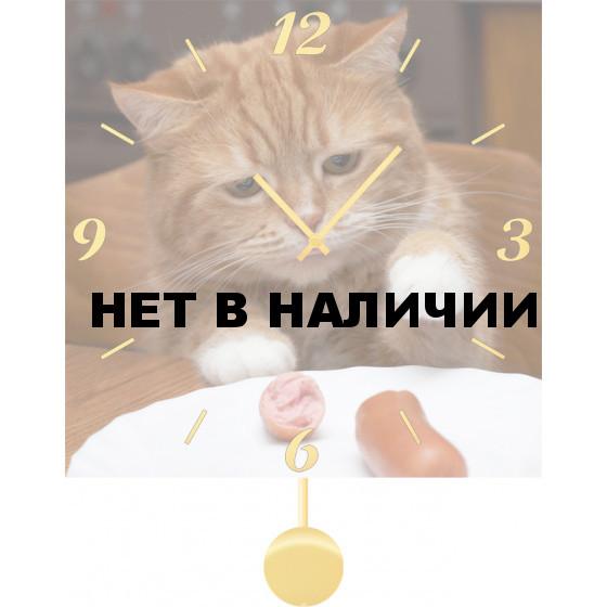 Настенные часы SvS 3512037