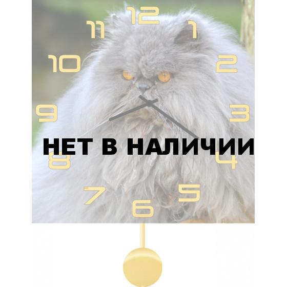 Настенные часы SvS 3512049