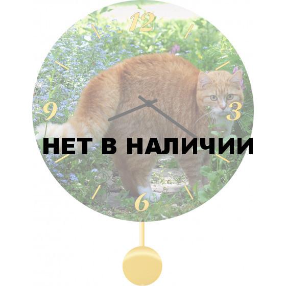 Настенные часы SvS 3512064