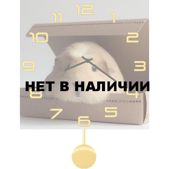 Настенные часы SvS 3512073