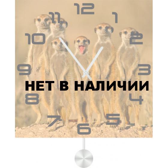 Настенные часы SvS 3512500