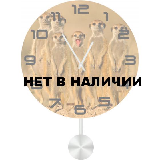 Настенные часы SvS 3512501