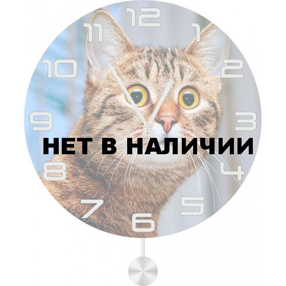 Настенные часы SvS 3512513