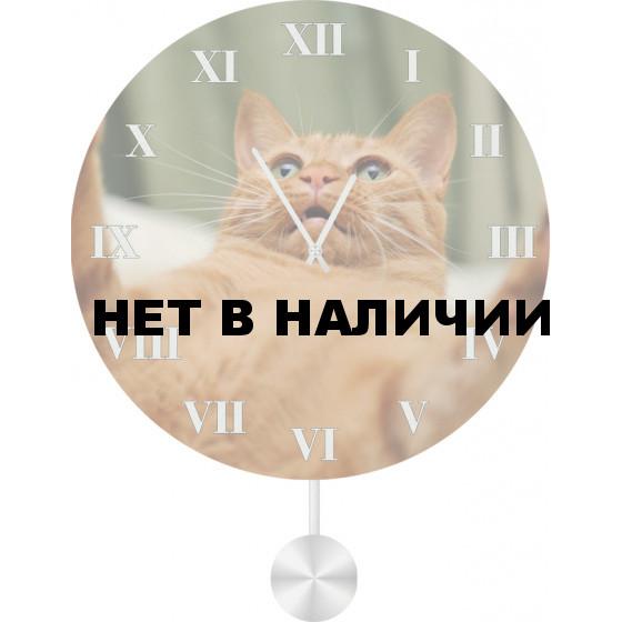 Настенные часы SvS 4011877