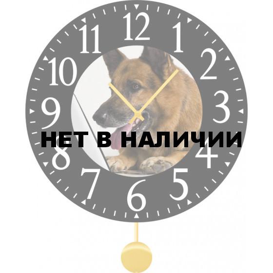 Настенные часы SvS 4012030