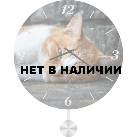 Настенные часы SvS 4511853