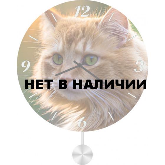 Настенные часы SvS 4511855