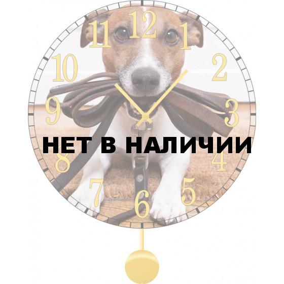 Настенные часы SvS 4512036