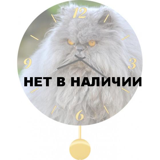 Настенные часы SvS 4512050