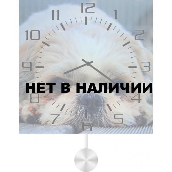 Настенные часы SvS 4512071