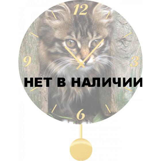 Настенные часы SvS 5011841