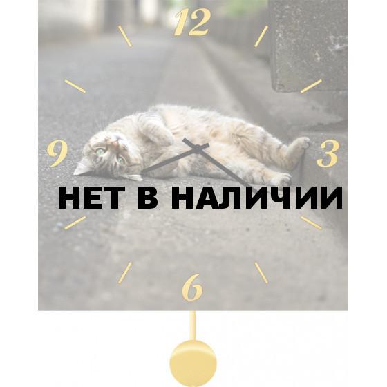 Настенные часы SvS 5011850