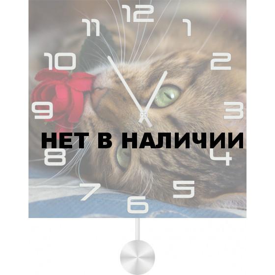 Настенные часы SvS 5011862