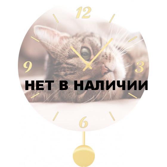 Настенные часы SvS 5011869