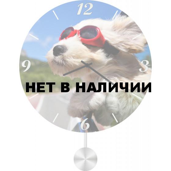 Настенные часы SvS 5012040