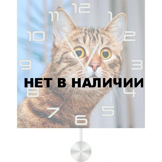 Настенные часы SvS 5012512