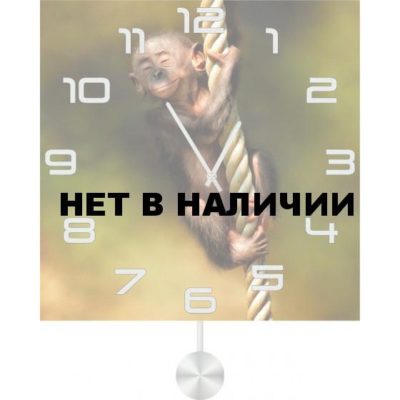 Настенные часы SvS 5012518