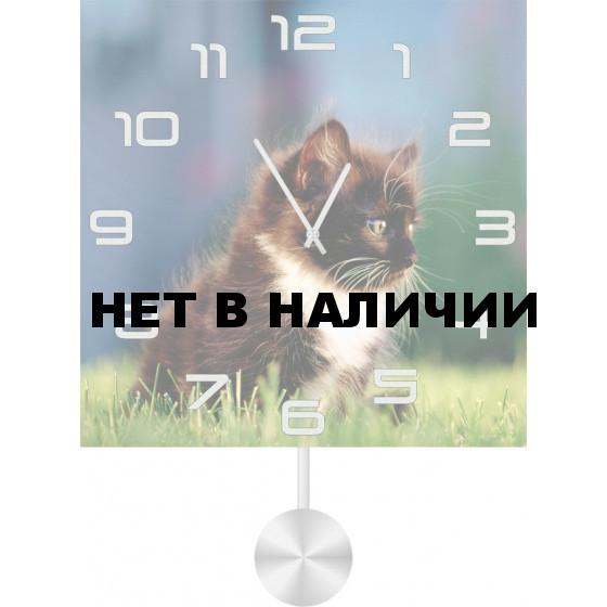 Настенные часы SvS 5511846