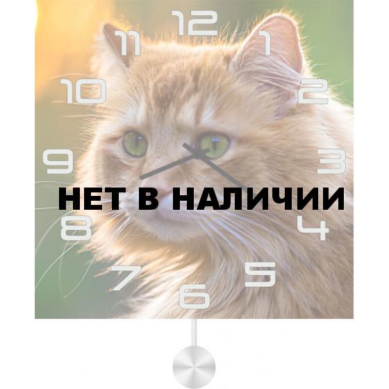 Настенные часы SvS 5511854