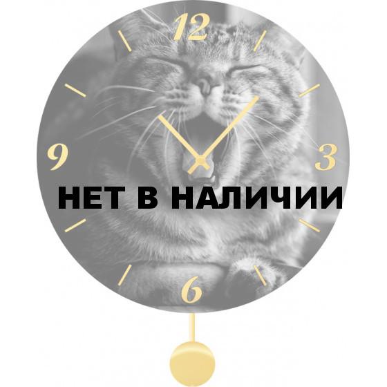 Настенные часы SvS 5511859