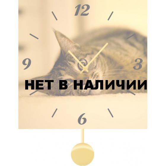 Настенные часы SvS 5511866
