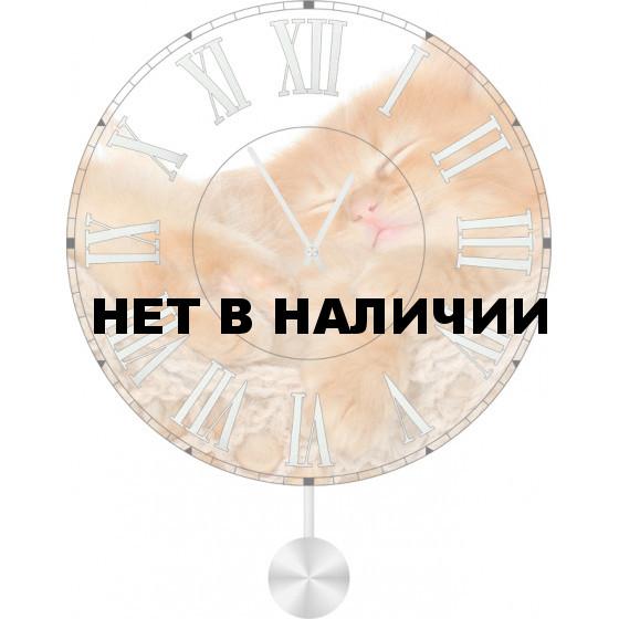 Настенные часы SvS 5512058