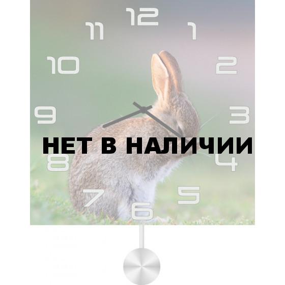 Настенные часы SvS 5512061