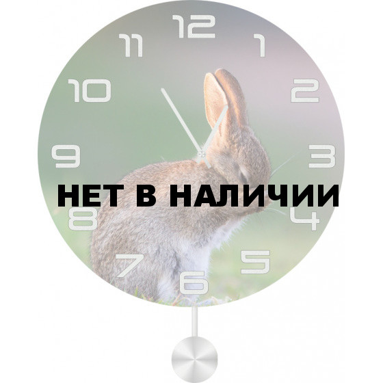 Настенные часы SvS 5512062